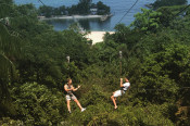 s: MegaZip | Cruisy Treetop Zipline to the Sea: photo #2