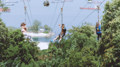 s: MegaZip | Cruisy Treetop Zipline to the Sea: photo #3