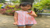 s: Butterfly Park & Insect Kingdom + Butterfly Release: photo #1