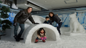 s: Snow Play Session + Drift on Ice Bumper Car: photo #3